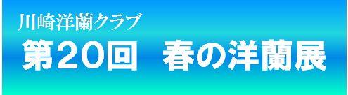 kawsaki-logo.jpg
